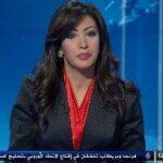 Al Jazeera HD arranca en el satélite Eutelsat Hot Bird 13C