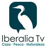 Iberalia TV en Movistar+ se convierte en un canal a la carta