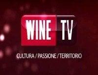 wine-tv