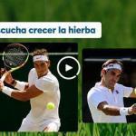 Nace Movistar Wimbledon, nuevo canal de televisión